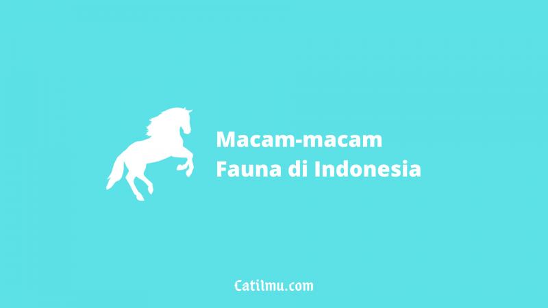 √ Macam-macam Fauna di Indonesia | Beserta Gambarnya (Terlengkap)