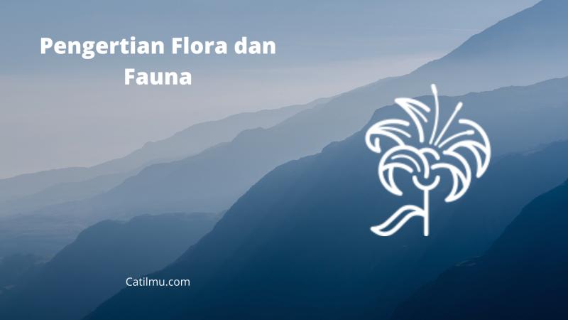 √ Pengertian Flora dan Fauna | Persebaran, Klarifikasi, dan lain sebagainya