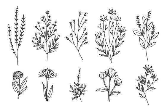 Kumpulan Bunga